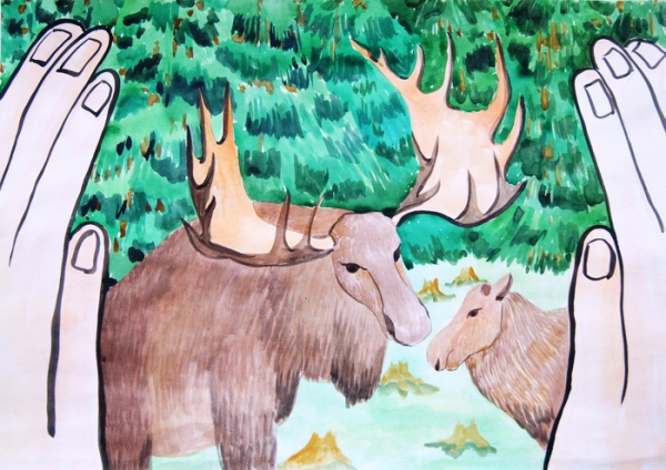 Рисунки на конкурс животные заповедника